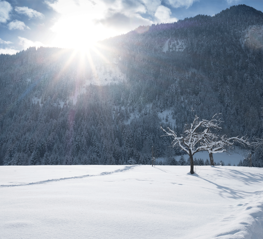 Schneeschuhwanderwochen im Winter im 4 Sterne Hotel Tirol