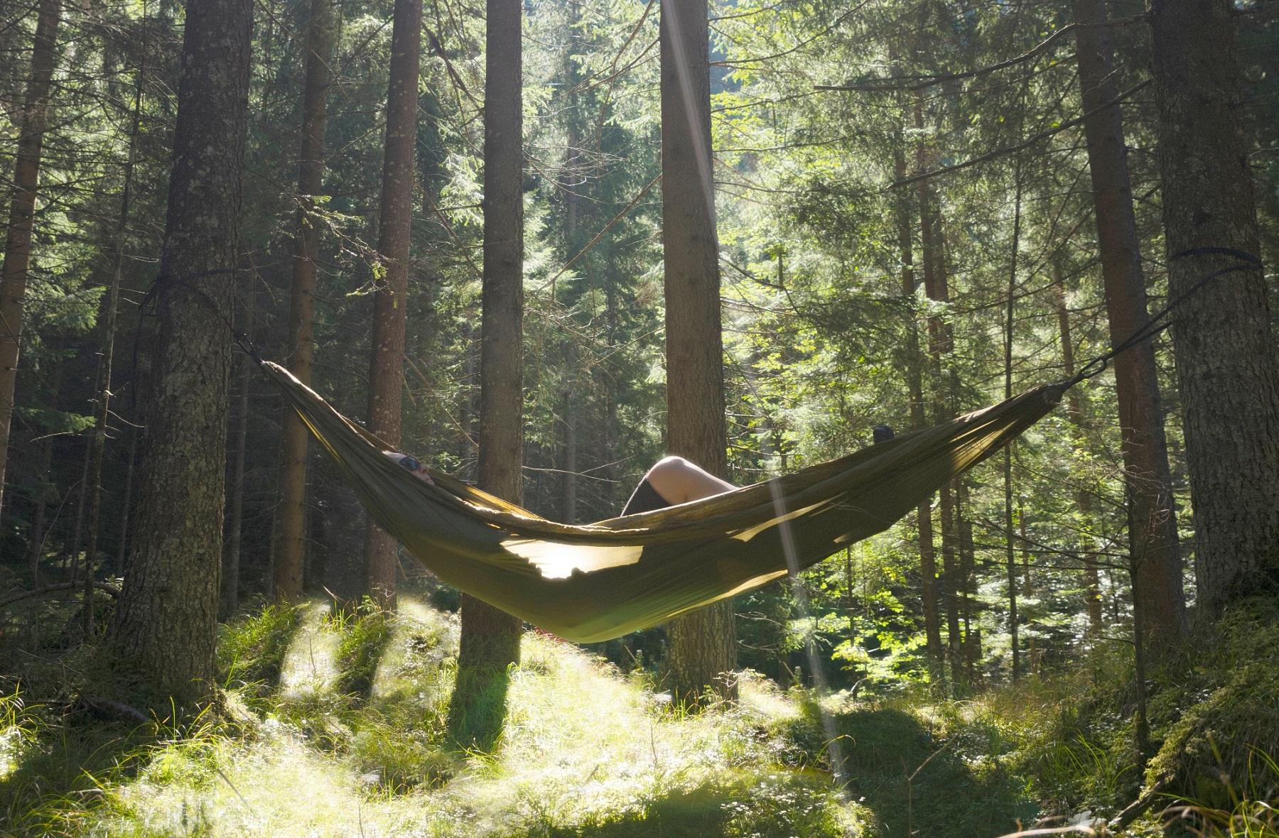 Entspannt beim Waldbaden im Naturhotel Alpbacherhof