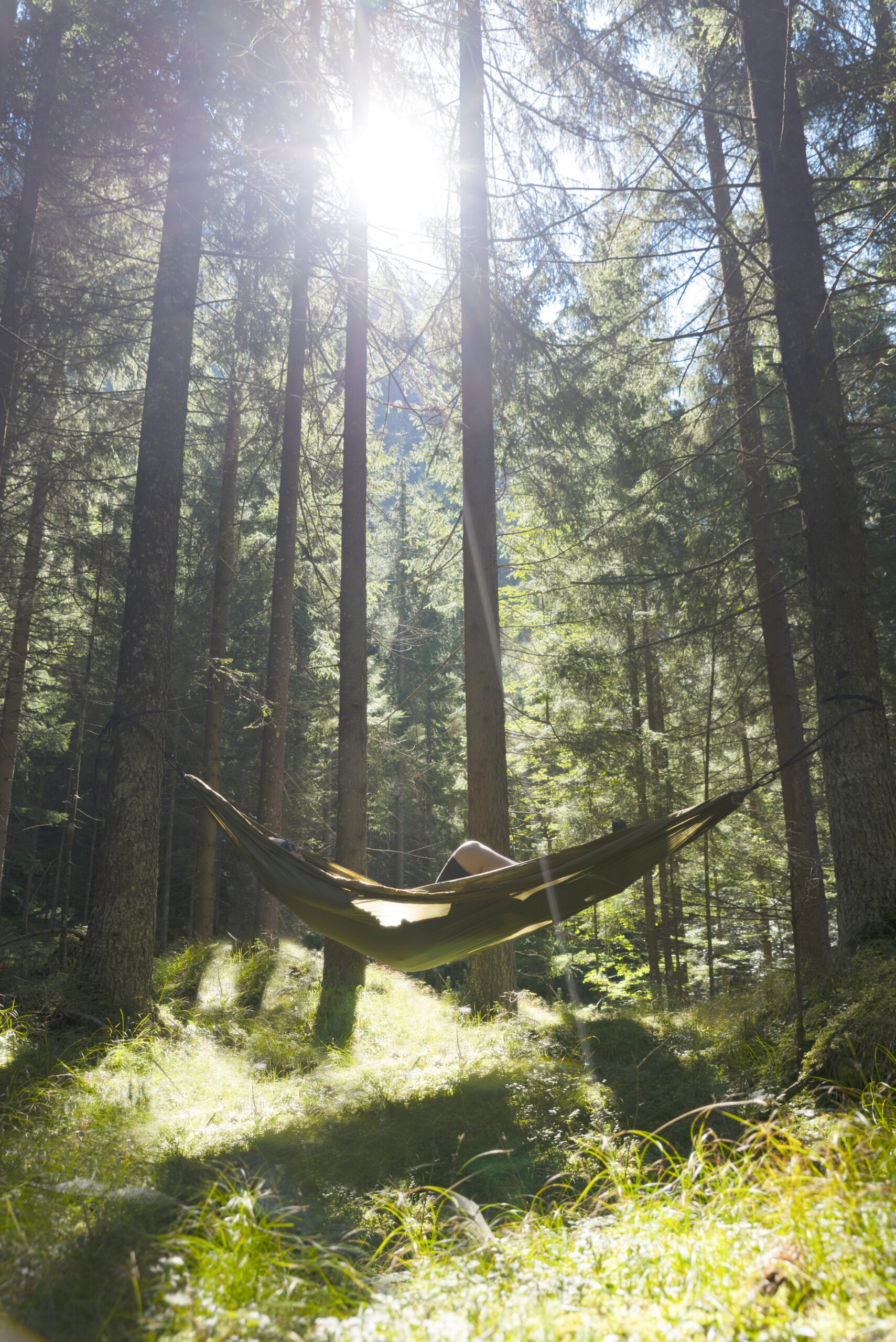 Waldbaden Naturhotel Der Alpbacherhof