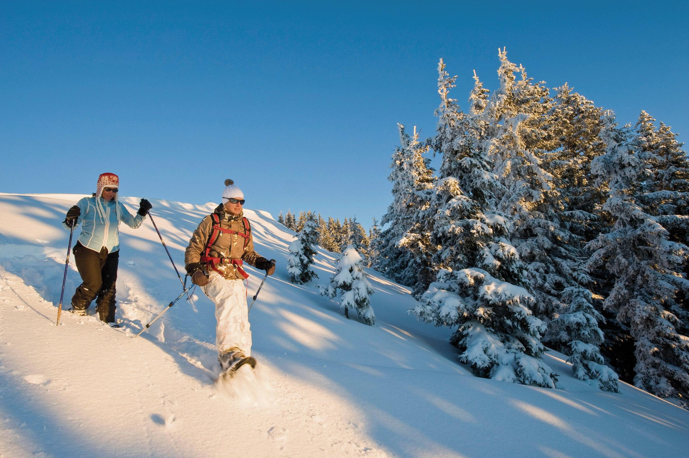 Schneeschuhwandern im Alpbachtal Tirol