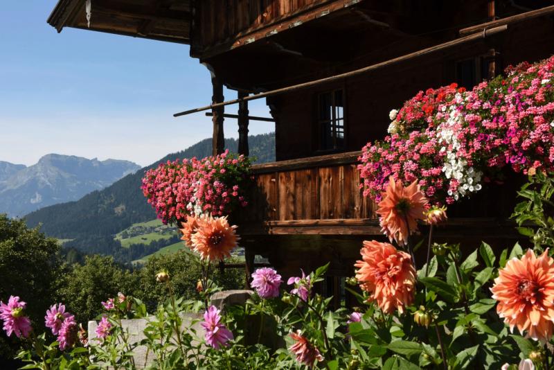 Alpbach Bauernhof mit Blumen_2 im Sommerurlaub Alpbach