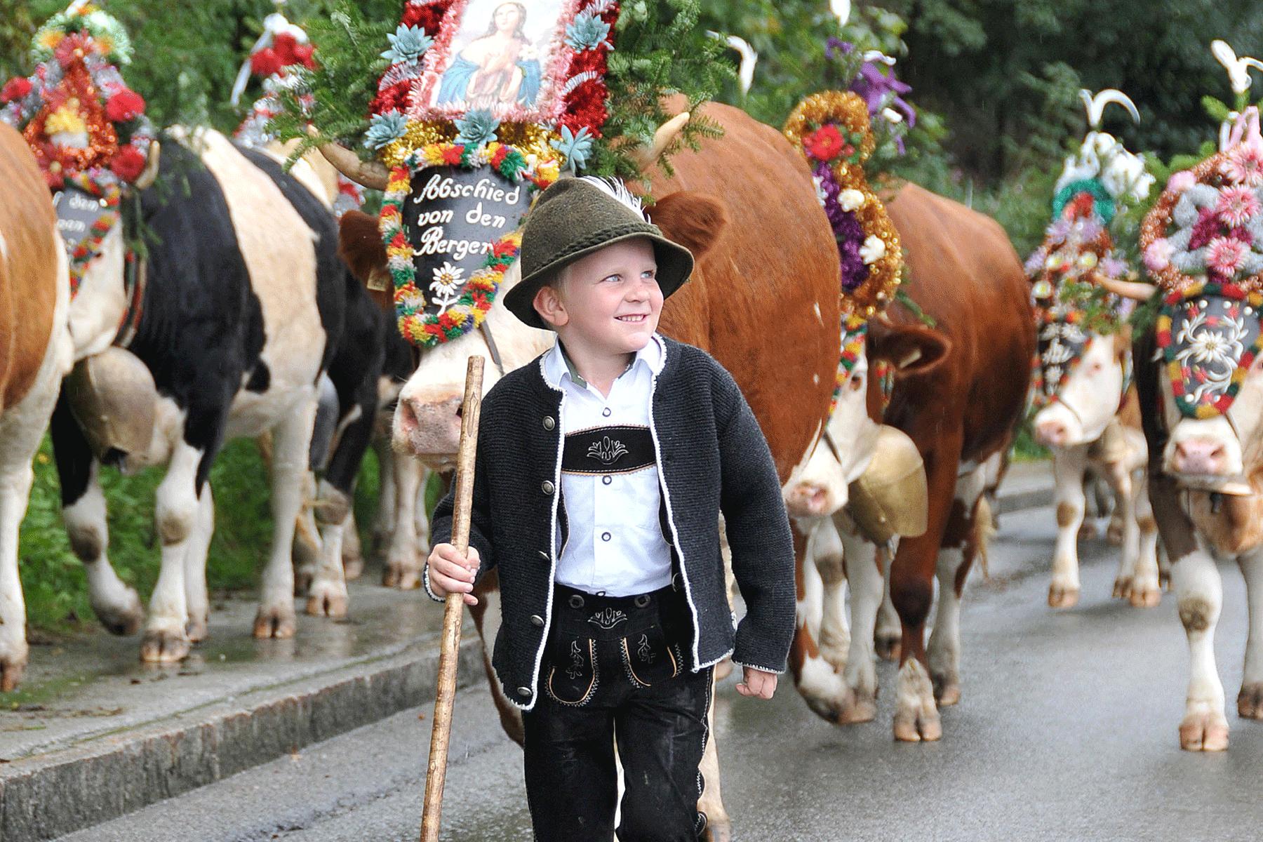Kirchtag Bub beim Almabtrieb im Kurzurlaub im Alpbachtal in Tirol