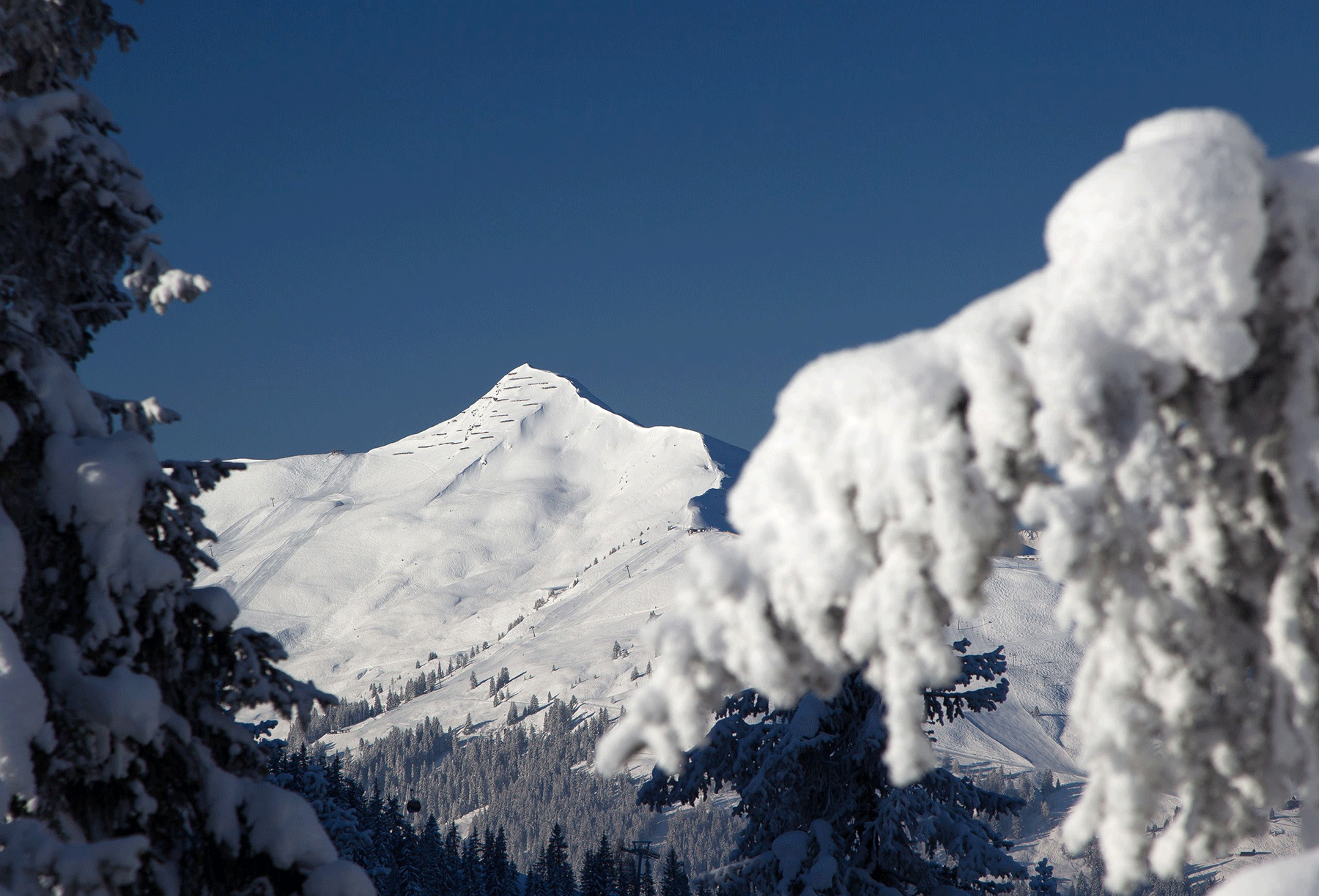 Ski Juwel Wiedersbergerhorn Aktivurlaub Kitzbüheler Alpen