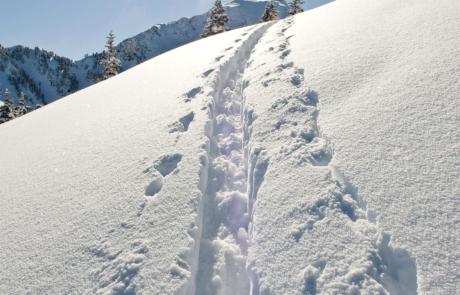 Skitour Inneralpbach beim Winterurlaub Skigebiet Juwel