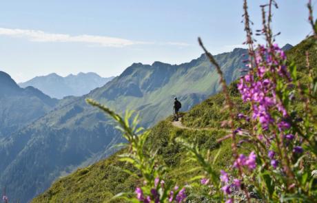 Wanderer Panoramaweg Wiedersbergerhorn beim Wandern Alpbachtal