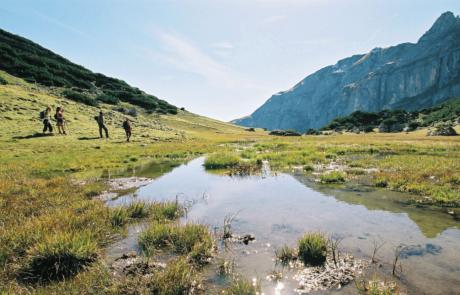 Wanderer im Alpbachtal_1 vom Wanderhotel Tirol