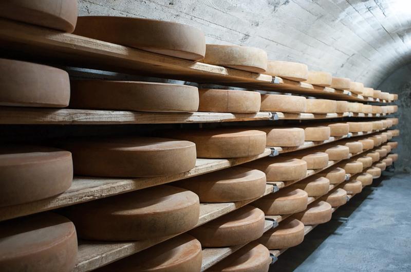 Käse in Alpbach Österreich