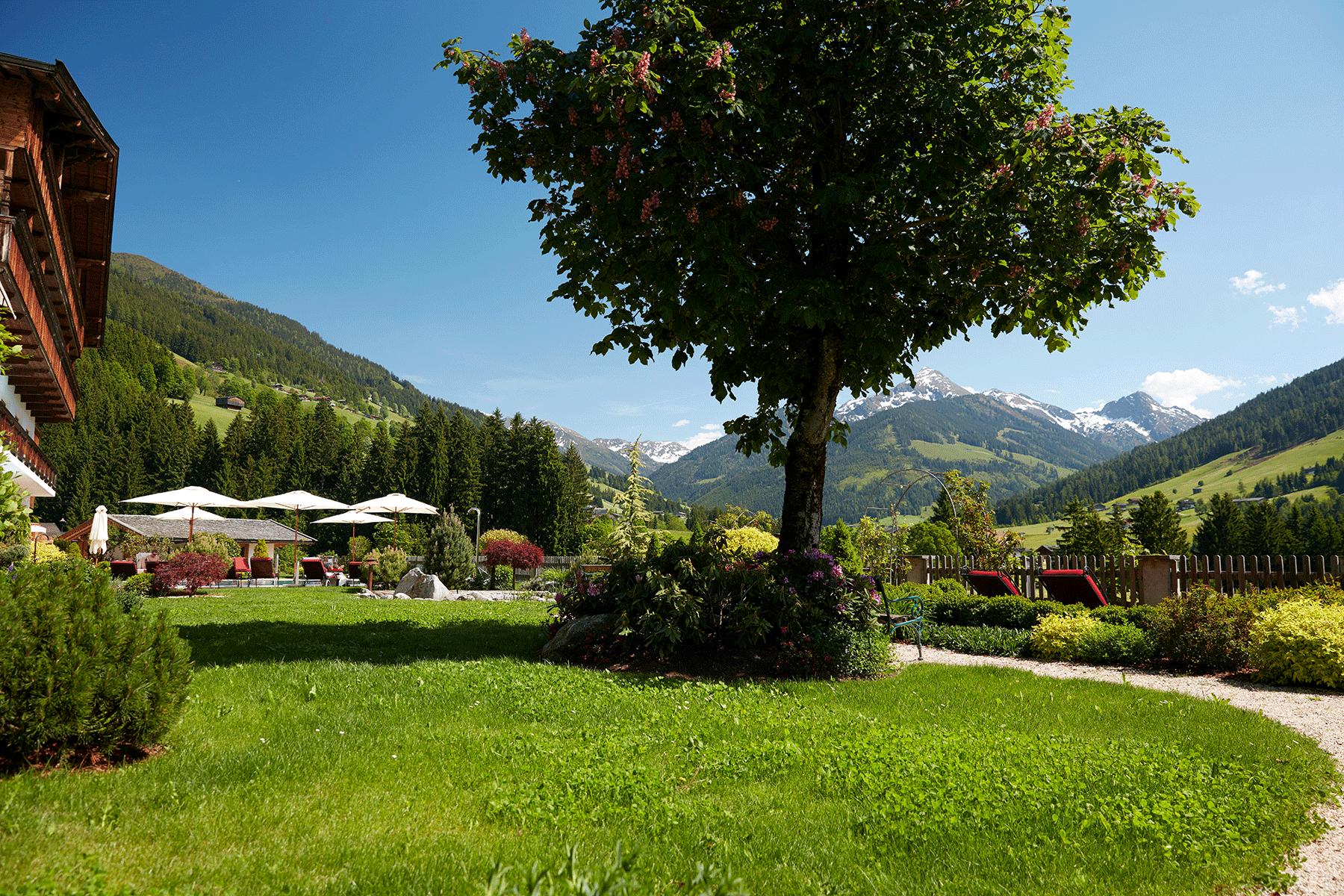 Wellnessgarten mit Baum im Wellnesshotel Alpbachtal
